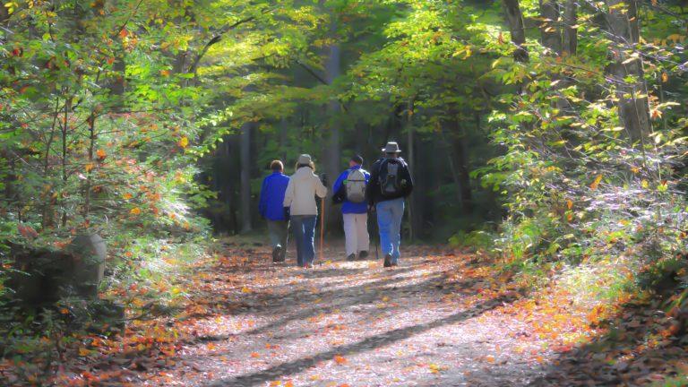 "Wachtendonk ""Wandern entlang der Niers"""